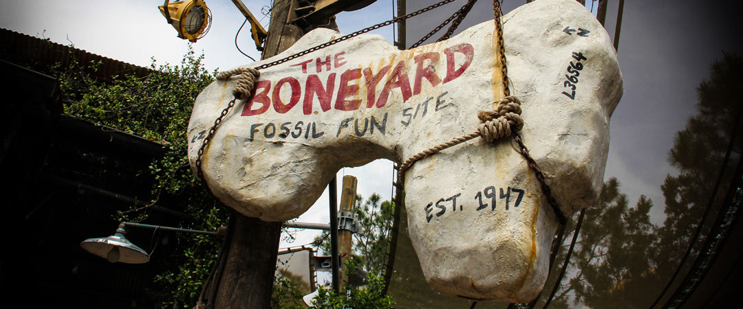 Boneyard - Animal Kingdom Playground