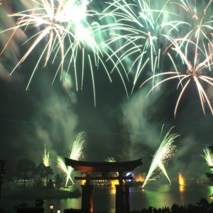 Tip: Quickly in and out of Epcot for Illuminations.