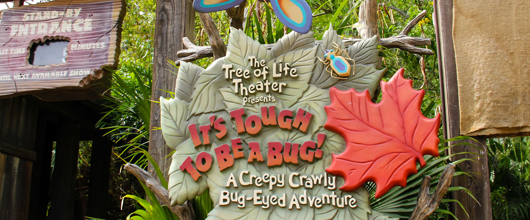 It's Tough to Be A Bug - Animal Kingdom Show