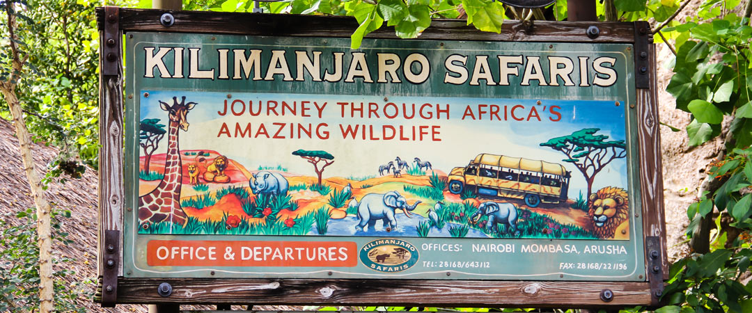 Kilimanjaro Safaris - Animal Kingdom Ride