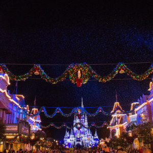 Tip: The parks can reach capacity during holidays.