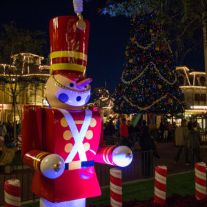 Tip: 2 weeks before Christmas is one of the best times to go to WDW.