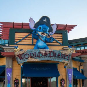 Tip: You can get your purchases shipped home from Downtown Disney.