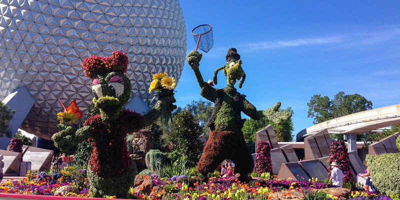 Epcot Flower and Garden Festival- Goofy and Daisy Topiaries