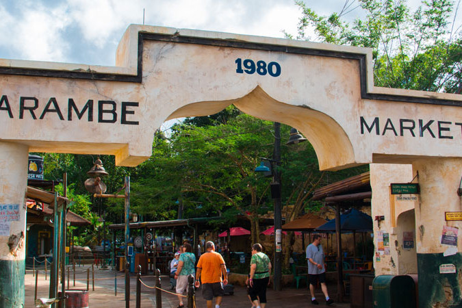 Harambe Market - Animal Kingdom - Dining - Guide2WDW