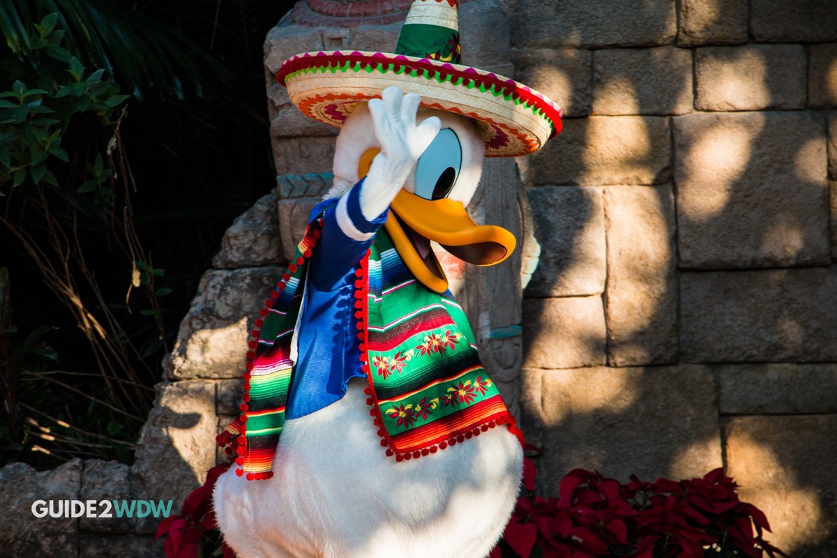 Donald Duck - Mexico - Epcot Character Meet and Greet