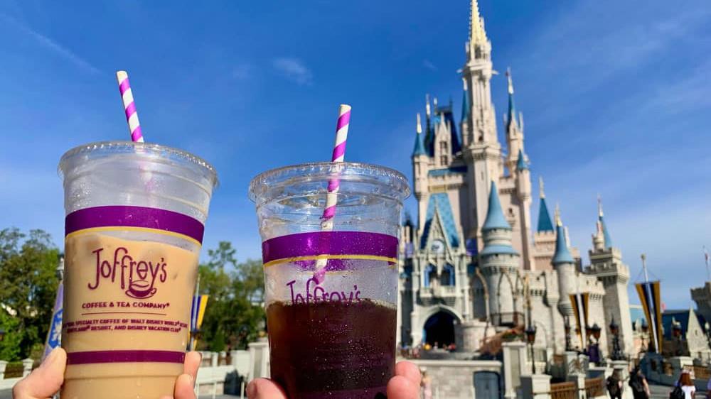Disney World Paper Straws
