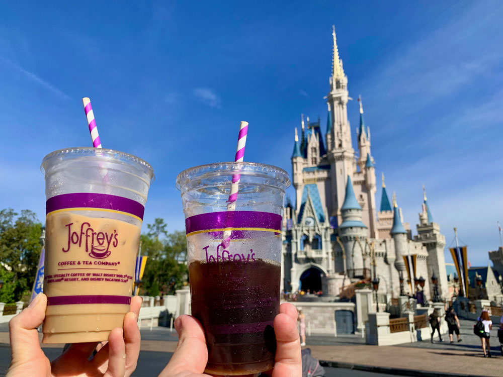 Disney World Paper Straws